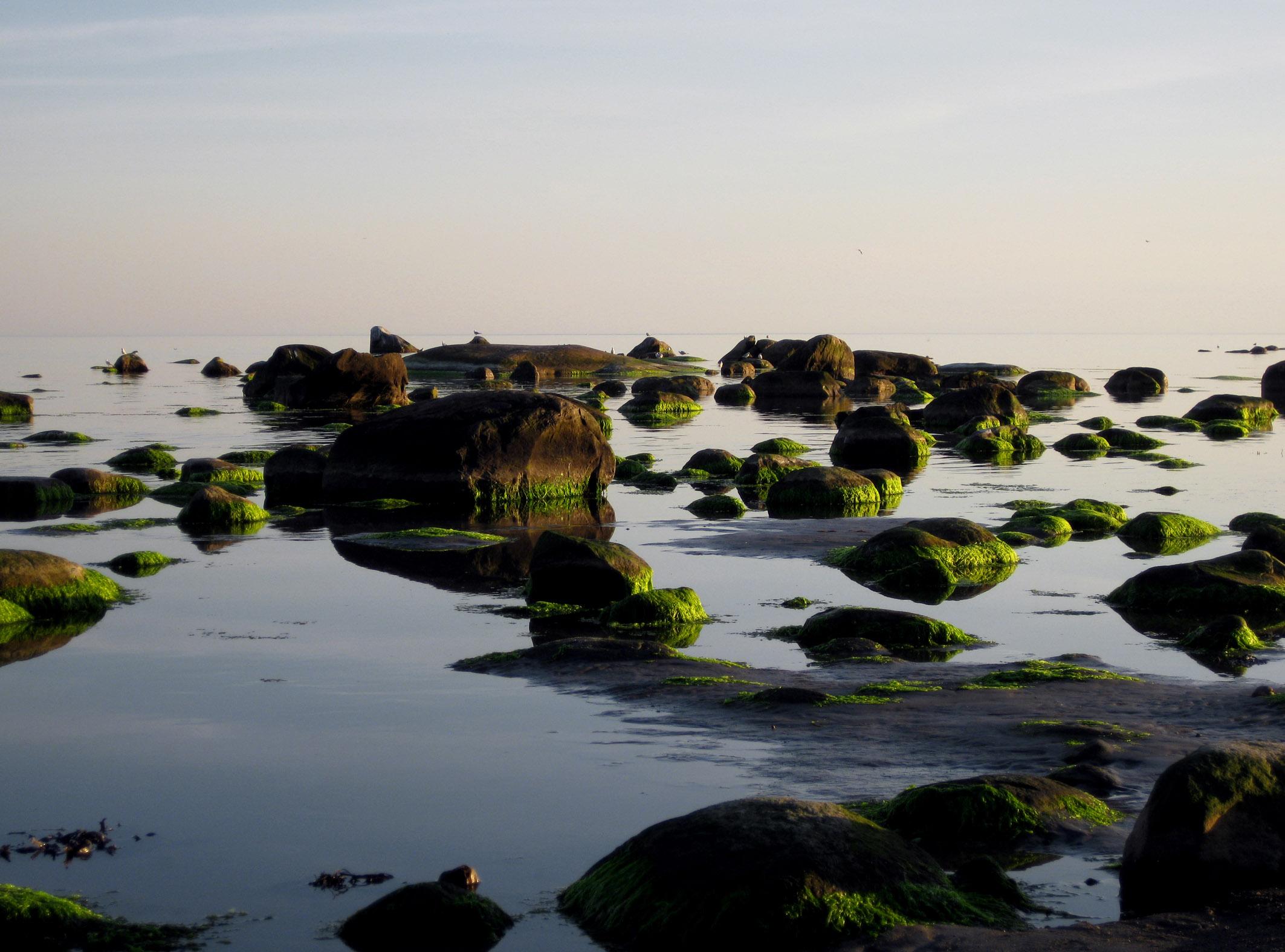 Haverdals strand och stenar