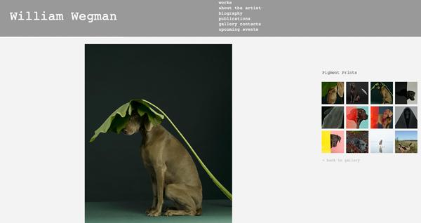 William Wegman´s hundar får ställa upp på diverse huvudbonader och klädesplagg.