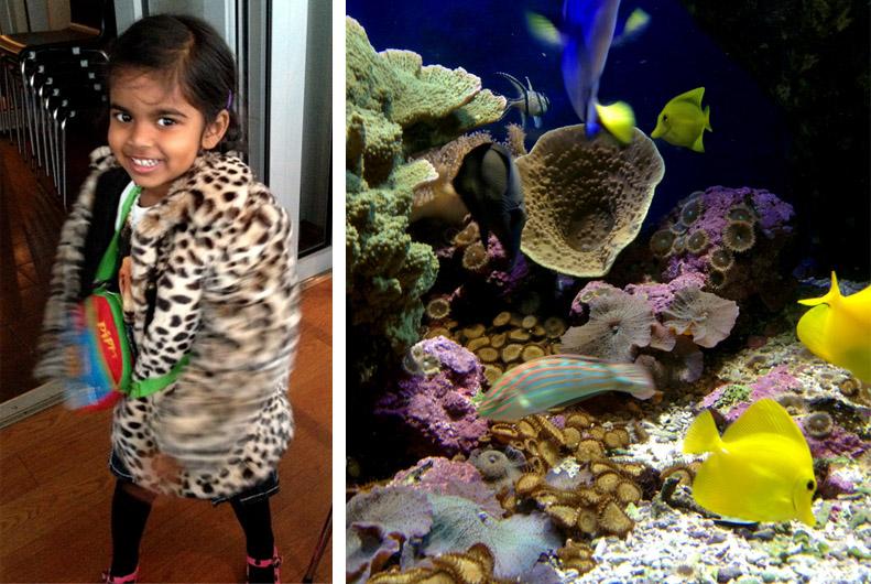 Maya och fiskar på Aquaria